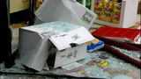 PHOTOS: Out-of-control driver rams through store - (5/12)