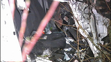 PHOTOS: Car launches 100 feet, hits tree,… - (2/11)