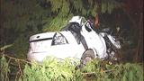 PHOTOS: Car launches 100 feet, hits tree,… - (4/11)