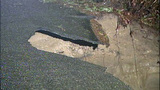 PHOTOS: Chunk of road washes away in Maple Valley - (10/16)
