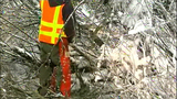 PHOTOS: Workers clear downed trees from roads - (7/10)