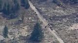PHOTOS: Chopper 7 over devastating landslide - (19/25)
