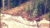 PHOTOS: Chopper 7 over devastating landslide - (22/25)