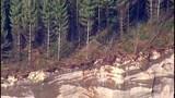 PHOTOS: Chopper 7 over devastating landslide - (7/25)