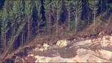 PHOTOS: Chopper 7 over devastating landslide - (25/25)