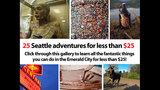 SeattleInsider: 25 Seattle adventures for… - (8/25)