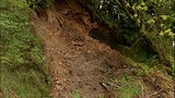 PHOTOS: Mud, debris spills onto SR 169 - (7/11)