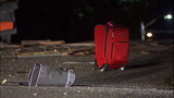 PHOTOS: Man killed, power cut in rollover crash - (2/14)