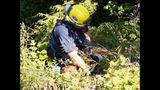 PHOTOS: Crews rescue dog over cliff - (1/13)