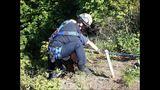 PHOTOS: Crews rescue dog over cliff - (11/13)