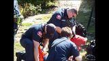 PHOTOS: Crews rescue dog over cliff - (9/13)