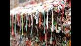 SeattleInsider: PHOTOS of storied gum walls - (23/25)