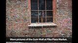 SeattleInsider: PHOTOS of storied gum walls - (24/25)