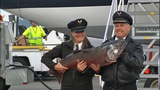 Copper River Salmon arrives in Seattle_5250447