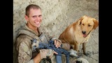 PHOTOS: Marine reunites with 4-legged 'soldier' - (1/13)