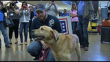 PHOTOS: Marine reunites with 4-legged 'soldier' - (13/13)
