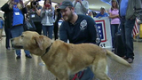 PHOTOS: Marine reunites with 4-legged 'soldier' - (10/13)