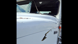 PHOTOS: Deer into truck windshield (WARNING:… - (2/4)