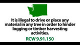 SeattleInsider: 28 UNBELIEVABLE laws that… - (21/25)