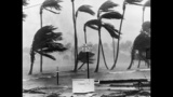 History's most destructive hurricanes - (12/17)