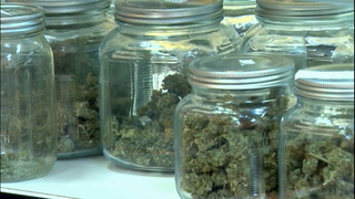 Spike in crashes since pot legalized could lead to higher insurance costs