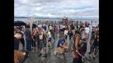 SeattleInsider: Scallywag pirates land on… - (8/25)