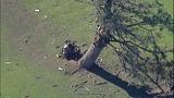 PHOTOS: Pilot killed in golf course plane crash - (13/16)