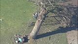 PHOTOS: Pilot killed in golf course plane crash - (4/16)