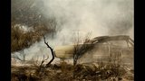 PHOTOS: Washington wildfires wreak havoc - (2/25)