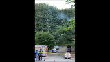 PHOTOS: Lightning strikes tree in Fremont - (11/14)