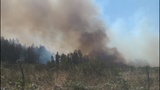 PHOTOS: Crews battle brush fire near Roy at JBLM - (3/10)