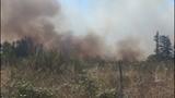 PHOTOS: Crews battle brush fire near Roy at JBLM - (2/10)