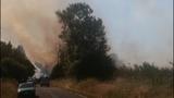 PHOTOS: Crews battle brush fire near Roy at JBLM - (5/10)