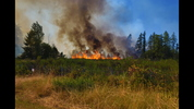 Crews battled four South Sound brush fires Sunday afternoon, said officials with the Department of Natural Resources. One of the four is near Roy at Joint Base Lewis-McChord.