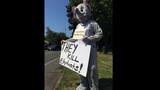 Euthanized Woodland elephant inspires protest… - (14/16)