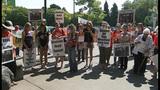 Euthanized Woodland elephant inspires protest… - (16/16)