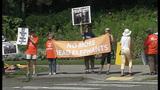 Euthanized Woodland elephant inspires protest… - (11/16)