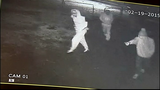 Men kill dog during Centralia home invasion_6815153