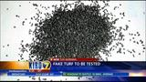 VIDEO: Crumb rubber controversy leads to testing