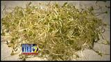 VIDEO: Sprouts farmer says his products are clean