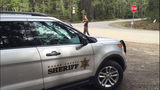 PHOTOS: 5 found dead after Mason County standoff - (19/29)