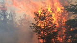 Brush fire burns about 8 acres in Mason County