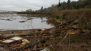 Facelift proposed for former Anacortes public dump