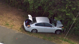 Driver slams into tree then flees, leaving hurt passenger behind