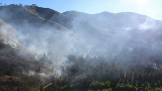 Nearly 50 homes evacuated due to Chelan Co. brush fire