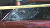 VIDEO: Teen hit by vehicle while crossing street