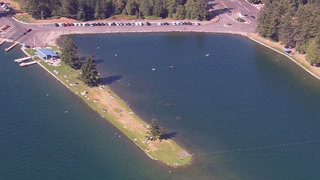 Swimming in Lake Tapps? Concern over toxic algae continues