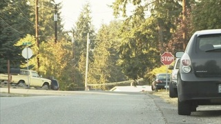 Everett police investigate attempted abductions