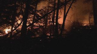 13-acre wildfire burns near Anacortes Little Cranberry Lake