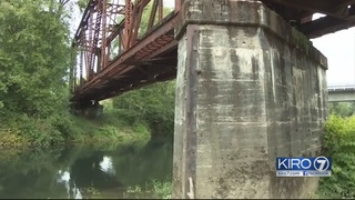Man who threw 4-year-old off bridge, mother cited with misdemeanors